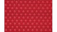 09188 VENUS coloris 1606 FRAMBOISE