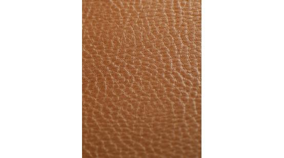 01220 SOTEGA/PAMPA coloris 0026 FUCHS-GOLD
