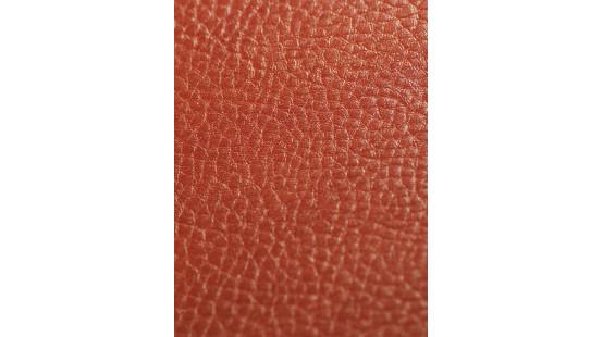 01220 SOTEGA/PAMPA coloris 0029 LACHS