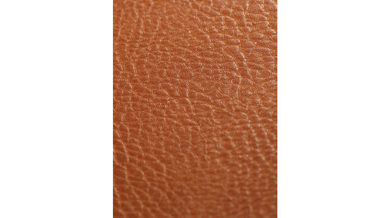 01220 SOTEGA/PAMPA coloris 0005 SHERRY
