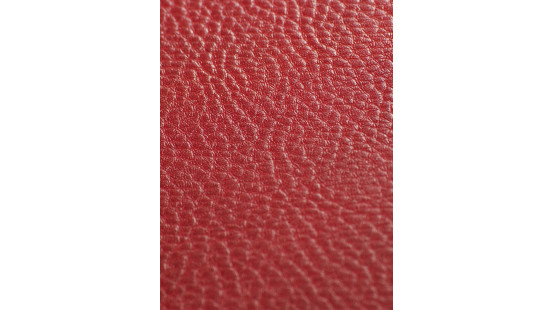 01220 SOTEGA/PAMPA coloris 0025 KIRSCHE
