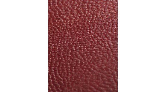 01220 SOTEGA/PAMPA coloris 0011 CARMIN