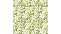 07216 BOTANIQUE coloris 0003