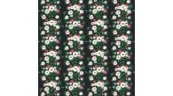07262 BELLA coloris 1903 EBONY