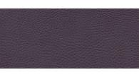 04037 SOTEGA FLS coloris 0020 PURPLE