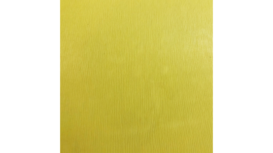 01918 ISALINE coloris 0023
