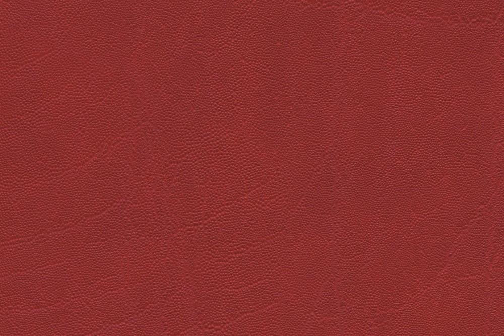 04021 plata